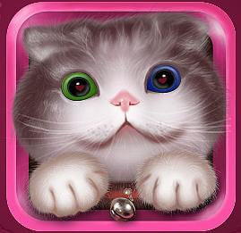 夜猫电视app破解版本V9.0免vip会员版