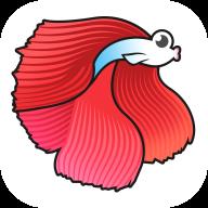 斗鱼看点官方app安卓版v1.0.0无限红包版
