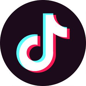 2020抖音发视频赚钱最快app官方版v
