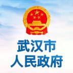 武汉市人民政府网上办事大厅v0.0.1网页版