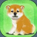 养育柴犬的治愈游戏无广告版安卓版