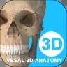维萨里3D解剖破解版免费VIP版v4.01
