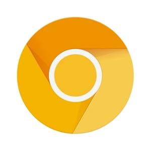 chrome金丝雀版安卓版(谷歌浏览器金色版)v91.0.4461.0官方版