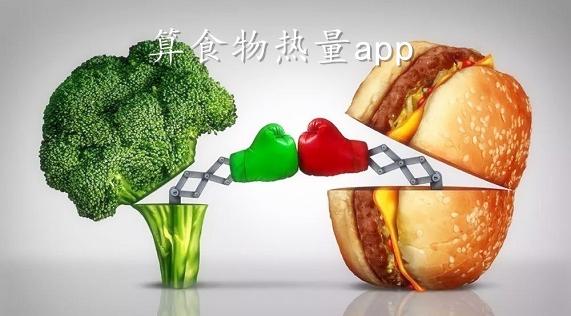 算食物热量app