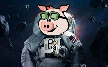 猪猪币交易平台有哪些 猪猪币在哪里交易