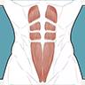 跟我练腹肌app最新安卓版