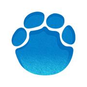 河南大象新闻投屏版本v2.0.11电视版